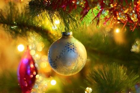 bola  em ramo de árvore de natal