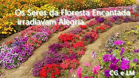 flores coloridas de diferentes espécies dispostas em círculo
