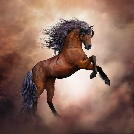 cavalo selvagem cor  de caramelo elevado sobre as patas