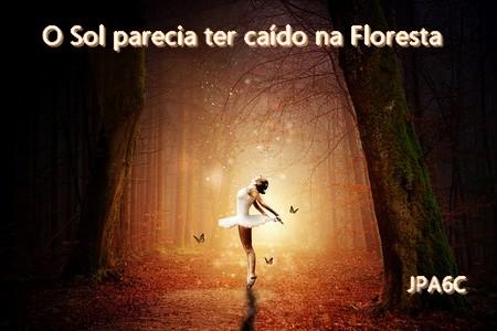 bailarina na floresta