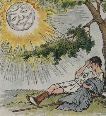homem sob árvore, transpirando, sem o seu casaco, e o rosto amável do sol