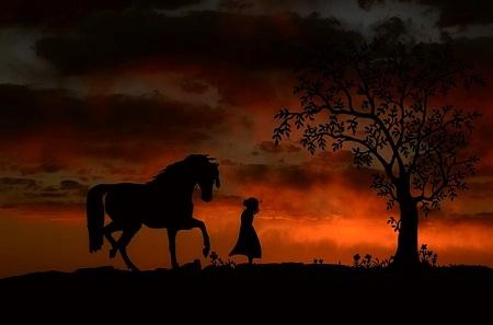 silhueta de menina e cavalo contra fundo de poente