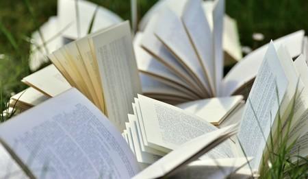 livros abertos na relva