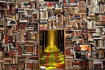 porta secreta rodeada de estantes de livros