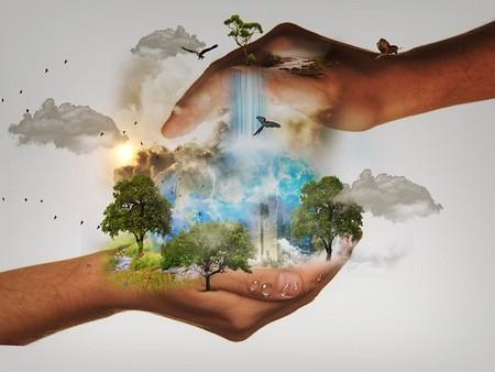 natureza conservada entre duas mãos em concha