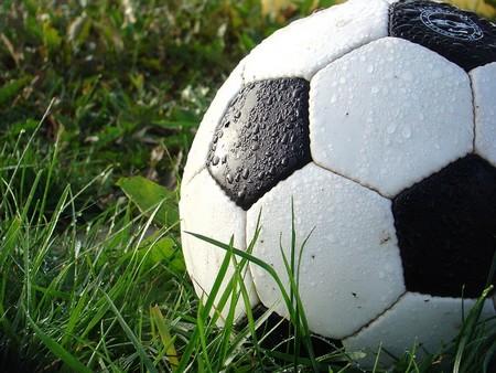 bola de futebol na relva coberta de orvalho