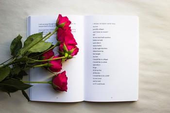 rosas sobre livro de poesia