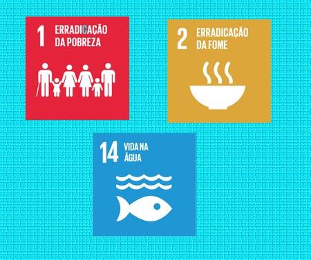 3 metas globais