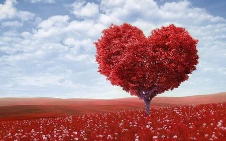 árvore em forma de coração