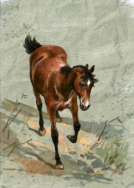 cavalo castanho pintura