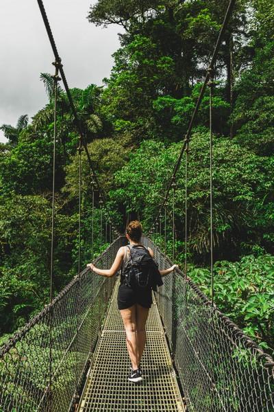 ponte na floresta