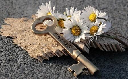 o sonho é a chave